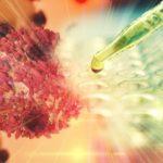 A CBD kombinációs alkalmazása rák kezelésében