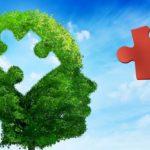 A kannabisz biztonságosságának és hatékonyságának értékelése autizmus spektrum zavarok esetén