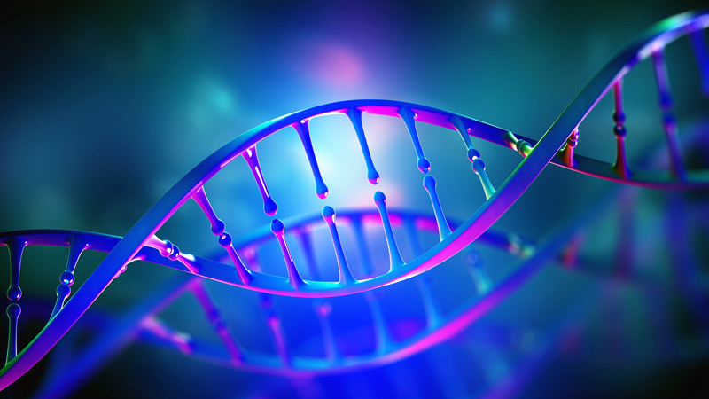 Esettanulmányok: A törékeny X-szindrómás betegek funkcionális javulást mutatnak CBD használata után   Magyar Orvosi Kannabisz Egyesület