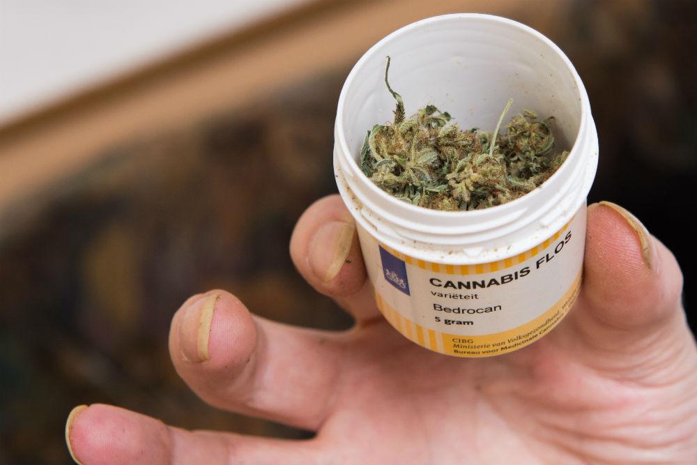 A német orvosi kannabisz piac 2028-ra elérheti a 8 milliárd eurót | Magyar Orvosi Kannabisz Egyesület