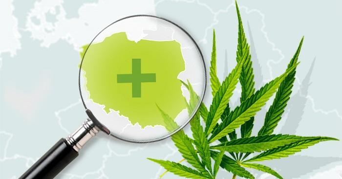 A lengyel orvosi kannabiszpiac 2028-ra elérheti a 2 milliárd eurót | Magyar Orvosi Kannabisz Egyesület