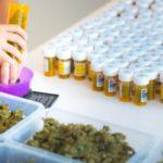 Német orvosi kannabisz: A terjesztésben kulcsszerepe van a gyógyszertáraknak