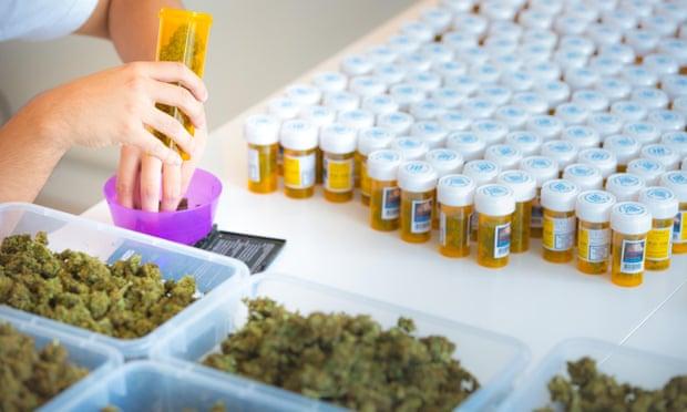 Német orvosi kannabisz: A terjesztésben kulcsszerepe van a gyógyszertáraknak | Magyar Orvosi Kannabisz Egyesület