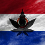 Paraguay megkezdi a kannabisz termesztését kutatási és orvosi célokra