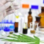 Klinikai vizsgálat: Egyes CBD-termékek használata pozitív drogtesztet eredményezhet, a tiszta CBD nem