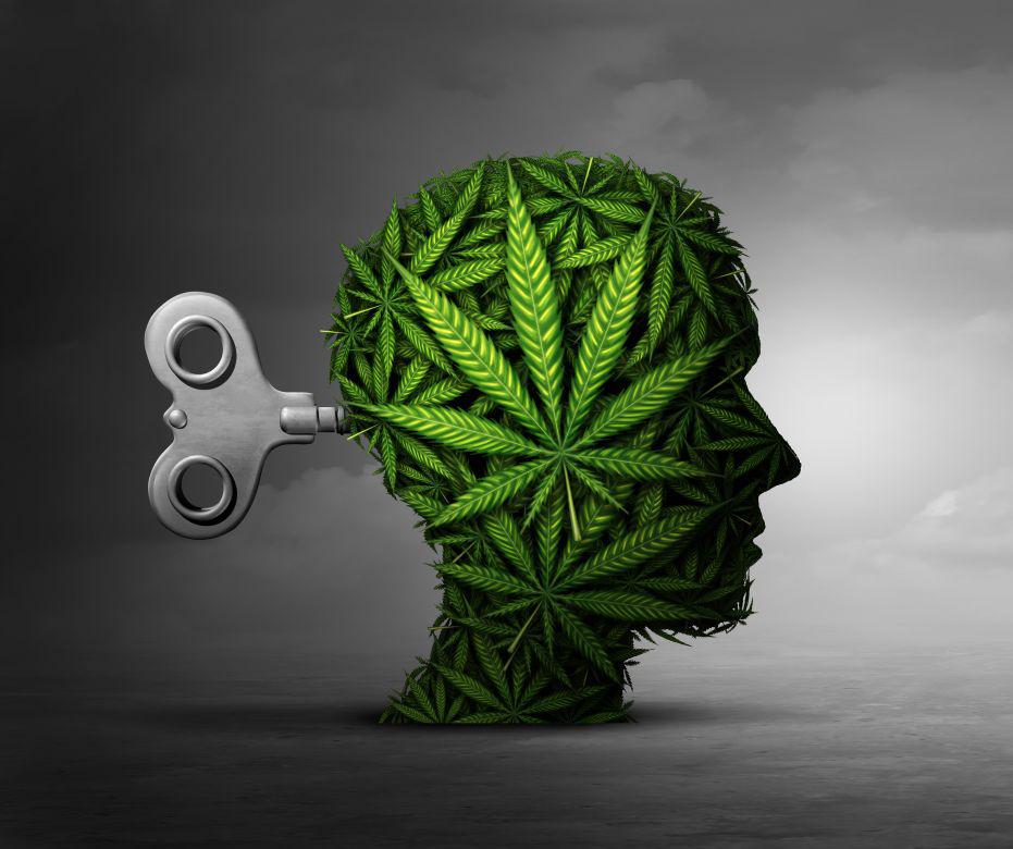 Az akut CBD-kezelés hatása a szorongásra és a remegésre, amelyet szimulált nyilvános beszédteszt vált ki Parkinson-kórban szenvedő betegeknél   Magyar Orvosi Kannabisz Egyesület