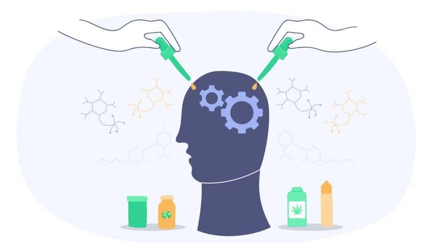 Az alacsony CBD dózis fokozhatja a THC pszichotróp hatásait, a magas CBD dózisok pedig csökkentik | Magyar Orvosi Kannabisz Egyesület