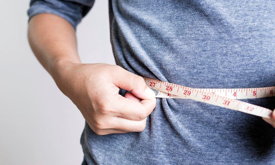 Támogathatja-e a CBD a fogyást és az anyagcserét? | Magyar Orvosi Kannabisz Egyesület