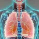 A THC és a CBD hatékonysága a tüdőrákban in vitro
