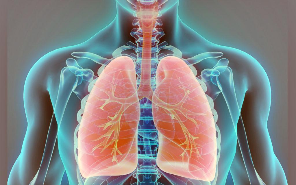 A THC és a CBD hatékonysága a tüdőrákban in vitro   Magyar Orvosi Kannabisz Egyesület