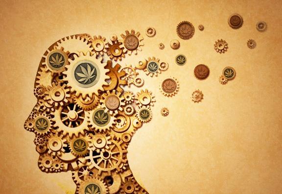 A kannabisz terápiás lehetőségei Alzheimer-kórban | Magyar Orvosi Kannabisz Egyesület
