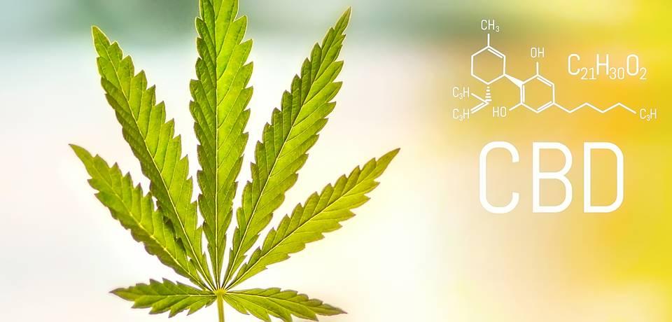 A CBD antioxidáns és gyulladáscsökkentő tulajdonságai   Magyar Orvosi Kannabisz Egyesület