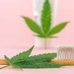 A kannabinoidok antibakteriális hatékonyságának összehasonlítása hagyományos fogkrémekkel