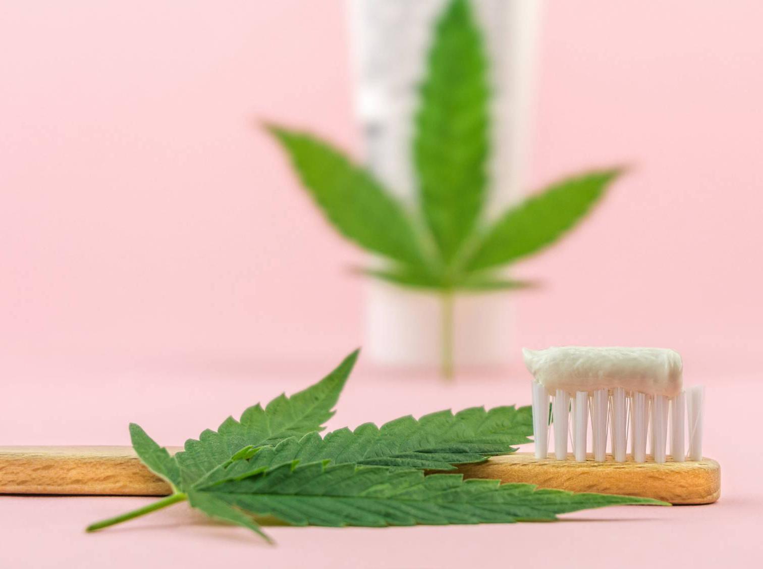 A kannabinoidok antibakteriális hatékonyságának összehasonlítása hagyományos fogkrémekkel | Magyar Orvosi Kannabisz Egyesület