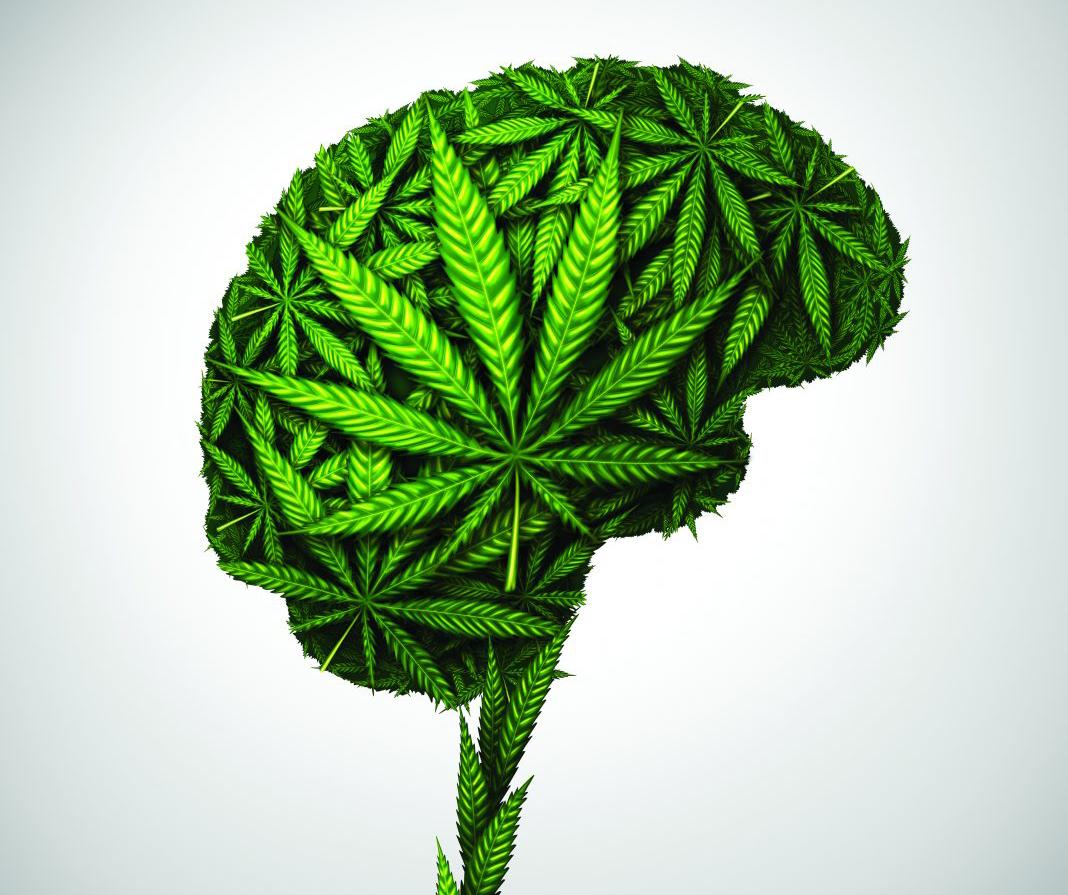 Esettanulmány: A kannabiszterápia sikeresen enyhíti a kezelhetetlen traumás agyi sérüléssel járó tüneteket | Magyar Orvosi Kannabisz Egyesület