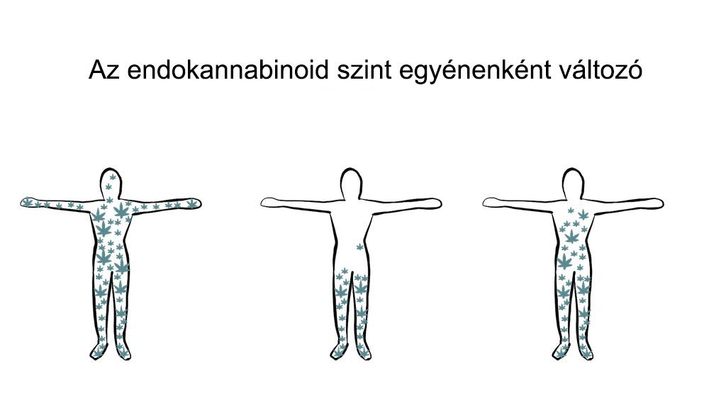 Kendertér - 4 migrene