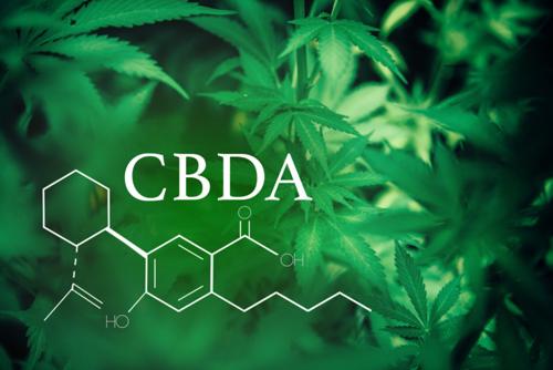 A CBDA csökkenti a trauma által kiváltott szorongással kapcsolatos viselkedést   Magyar Orvosi Kannabisz Egyesület