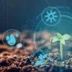 Regeneráló kannabisz gazdálkodás – A megoldás a lábunk előtt hever