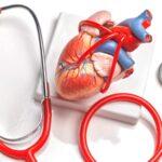 A kannabisz halmozódó használata nincs összefüggésben szív rendellenességekkel középkorúaknál