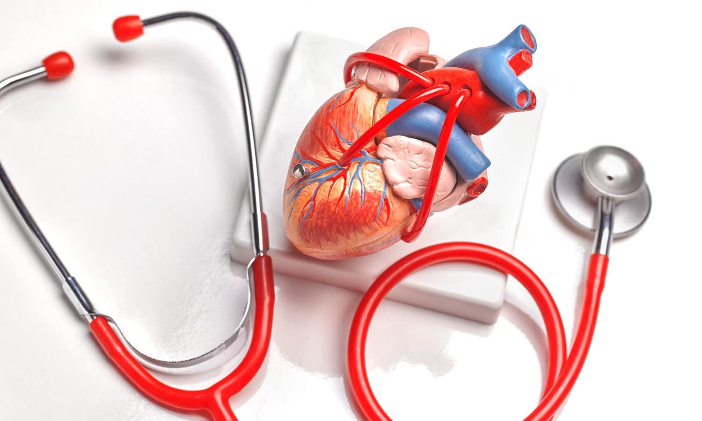 A kannabisz halmozódó használata nincs összefüggésben szív rendellenességekkel középkorúaknál | Magyar Orvosi Kannabisz Egyesület