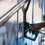Kender növény lesz buszok üzemanyaga Franciaországban