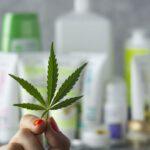 Az Európai Bizottság hozzáadta a kozmetikum adatbázishoz a természetes egész növényi CBD-t