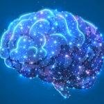 Új kannabinoid készítmény glioblastoma agydaganat kezelésére