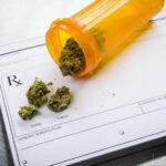 Az orvosi kannabiszt használók csaknem fele 12 hónap után abbahagyja az opioidok használatát a fájdalom kezelésére