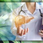 A kannabiszhasználat nem befolyásolja hátrányosan a túlélési arányt a májtranszplantált betegeknél