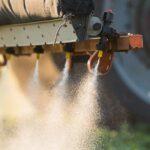 A CB1 kannainoid receptor véd a peszticidek toxicitása ellen