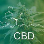 Egy klinikai vizsgálatban a CBD beadása mérsékli a stressz szintjét azoknál az alanyoknál, akiknél klinikailag magas a pszichózis kockázata