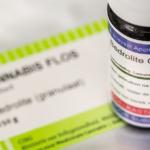 THC és CBD tartalmú kannabisz olaj csillapítja a rohamokat gyermekkori epilepszia esetén Angliában