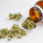 Az orvosi kannabisz engedélyezése csökkentette az opioidok használatát